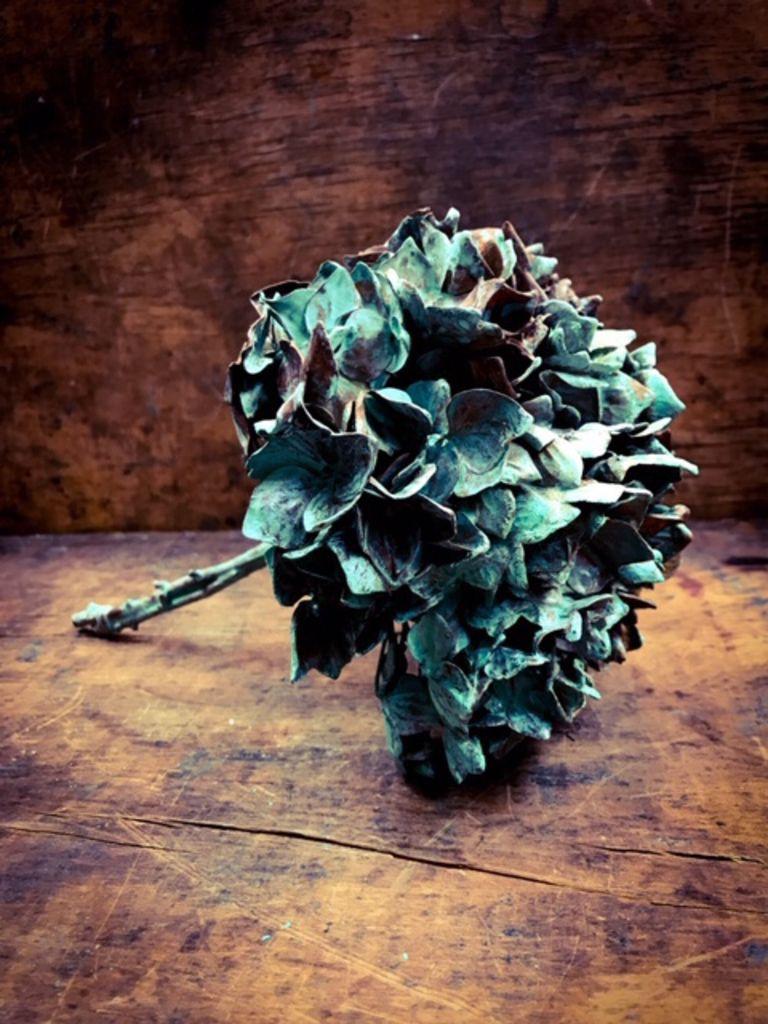 Image of   ARTbyKobber - Hortensia kugle / forkobret